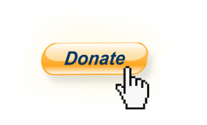 Donate by PayPal, credit or debit card